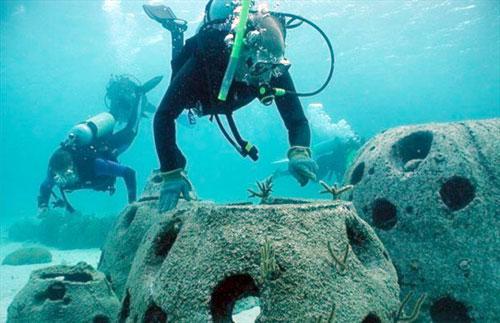 reef-ball-